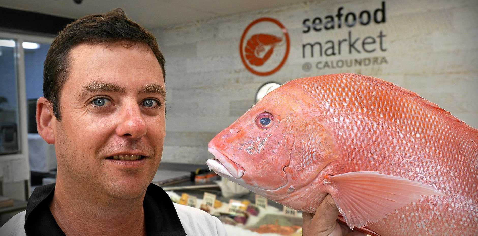 Cyclone Nora No Problem As Easter Seafood Storm Approaches Sunshine Coast Daily
