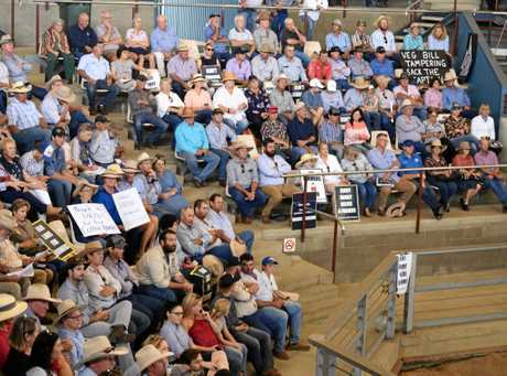 AROUND 500 impassioned farmers gathered this morning at Central Queensland Livestock Exchange (CQLX) to rally against the proposed new vegetation management laws.