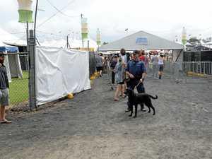 Police warn of 'zero tolerance' for drugs at Bluesfest