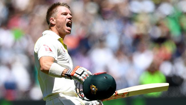 David Warner has reportedly been identified as the chief instigator of Australia's ball tampering scandal.