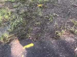 Tyre tracks show how fatal crash unfolded