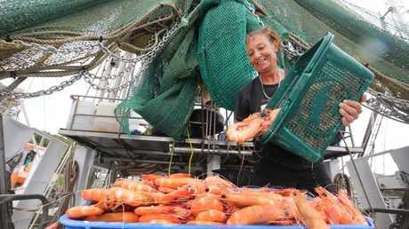Donna King with plenty of prawns. Picture Glenn Hampson