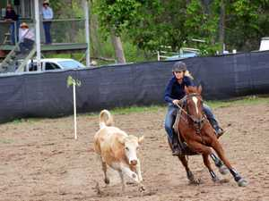 Barrel of laughs: Rocky teen takes on camp draft titles