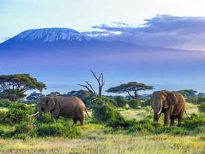 The top five Africa attractions