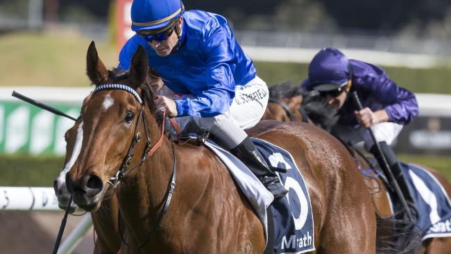 Alizee will step up to 2000m for the first time in the Vinery Stud Stakes. Picture: AAP