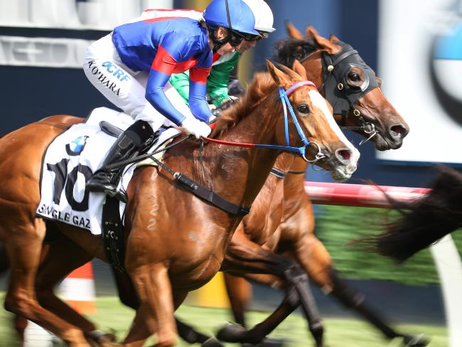 Kathy O'Hara and Single Gaze during last year's Caulfield Cup. Picture: AAP