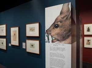 Art of Science: Take a 200-year voyage into Australia's past