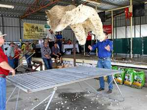 SHARP SKILLS: Top shearers crowned at Warwick competition