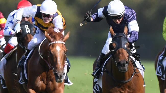 Almandin, right, showed his staying power in the Tancred Stakes. Picture: AAP
