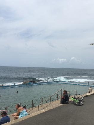 Dee Why rock pool. Picture: Supplied
