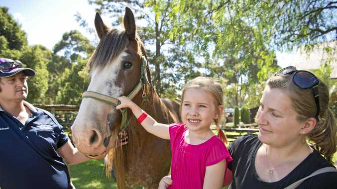 Patting Clem the Clydesdale are (from left) Michael Martin, Skye Smee, 6, and Emma Smee at the Easter Vintage Festival.