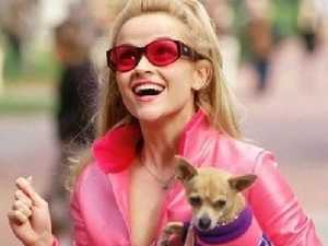 Legally Blonde almost had another ending