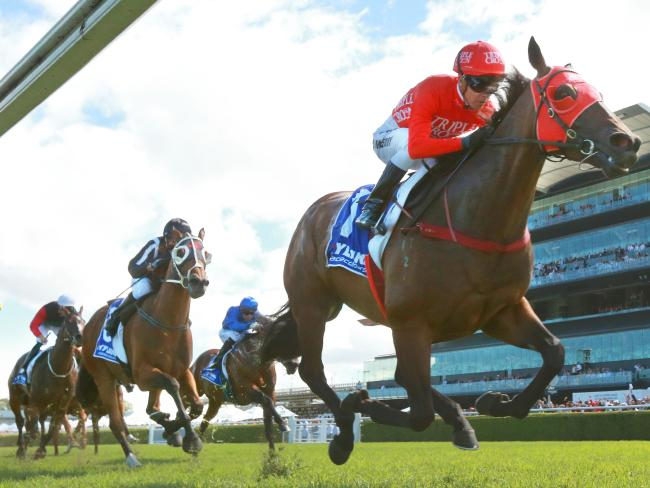 Redzel is favourite to take the win. Picture: Mark Evans/Getty Images