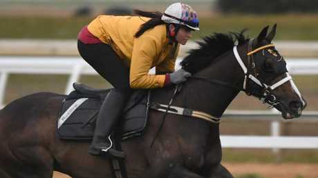 Co-trainer Natalie Young says ATC Derby contender Main Stage has thrived in the warmer weather in Sydney will be suited at the distance on Saturday. Picture: Getty Images