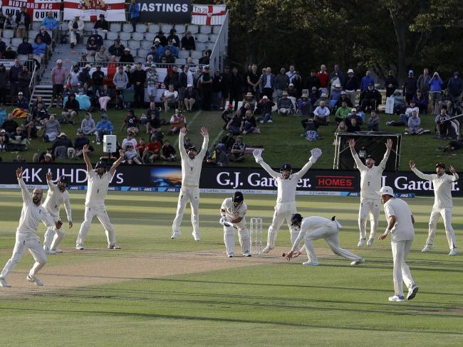England players appeal unsuccessfully during the final hours of play.