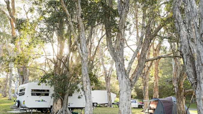The leafy grounds of BIG4 Sawtell Beach Holiday Park.
