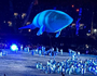Our Migaloo becomes the star at games opening ceremony