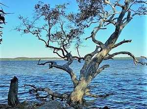 Eroding lake's beauty as council looks to redress damage