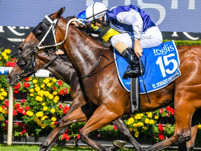 Jockey Damian Lane (nearest) and El Dorado Dreaming edge out Oohood on the lines to capture the Inglis Sires in sensational circumstances. Picture: AAP
