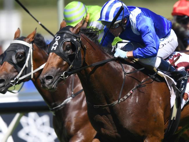 Muraaqeb and Damien Oliver add to punters' woes with a surprise win in the China Horse Club Carbine Club Stakes. Picture: AAP