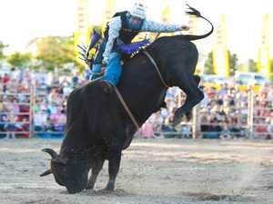 Two bulls euthanised after rodeo mishaps
