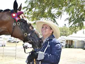 Thoroughbreds show their stuff on new stage