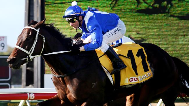 Larry Cassidy steers Winx to victory in the 2015 Sunshine Coast Guineas. Picture: Tara Croser