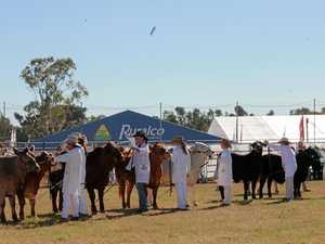 QATC sending students to Beef Australia 2018