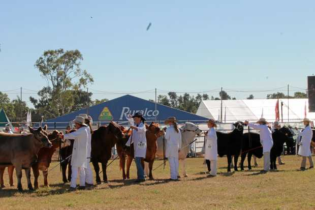 ENTER NOW: QATC CEO Mark Tobin is encouraging young people to enter the Young Paraders competition at Beef Australia 2018.