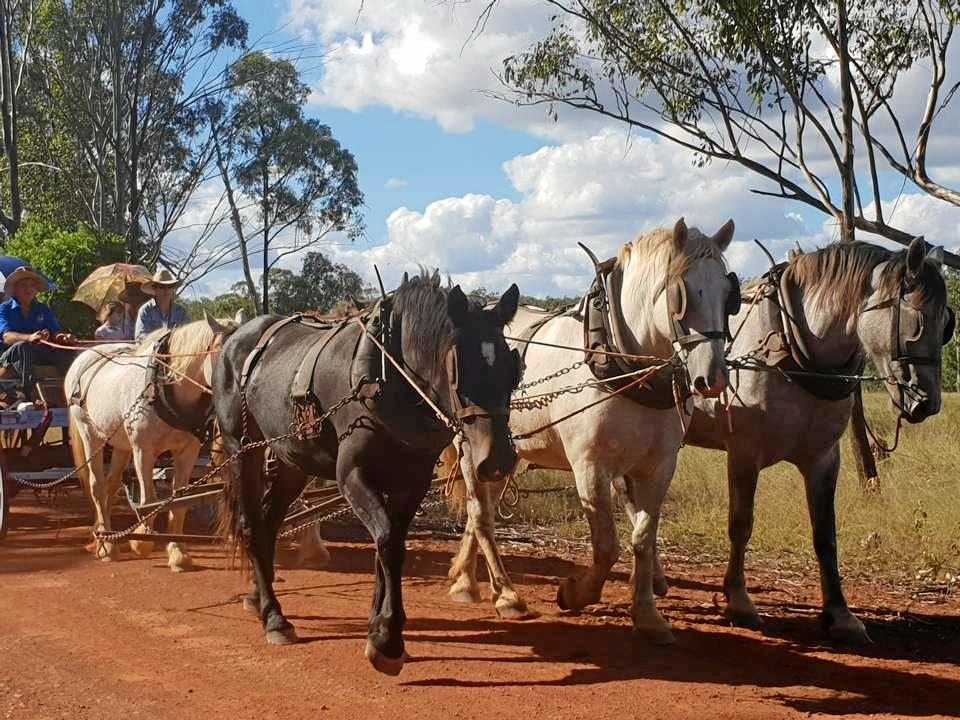 The Eidsvold Charity Cattle Drive has commenced with the horses being carted away.