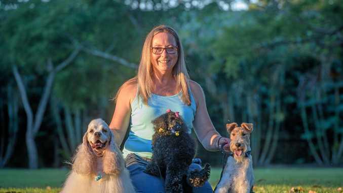 Dog Groomer Directory Australia