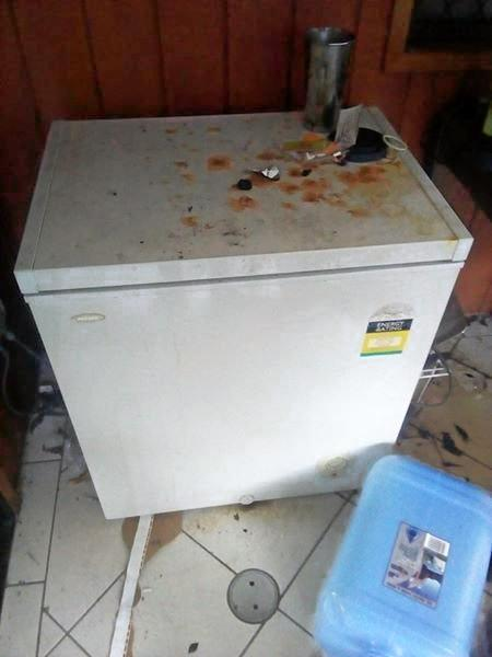 A freezer filled with rotten meat that's been advertised for free.