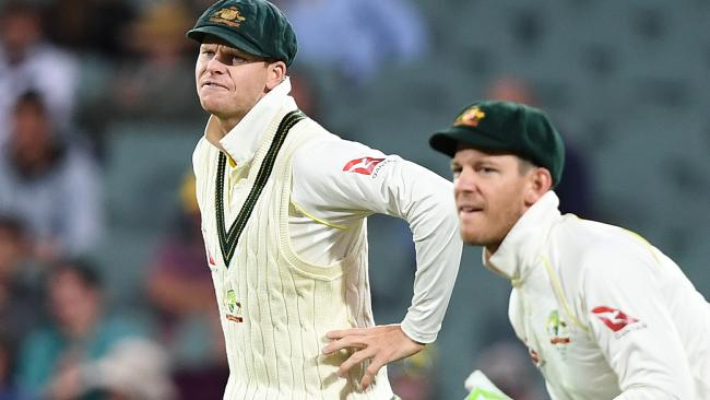 Steve Smith is out and Tim Paine has rejoined the list after captaining Australia in the final Test against South Africa.