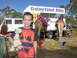 For young show-goer, camels are a must see