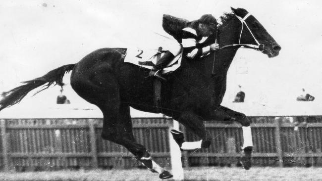 "Phar Lap is the highest rated horse in Australian history with a rating of 141. Sports broadcaster Bruce McAvaney believes Winx (134) is up there with ""Big Red""."
