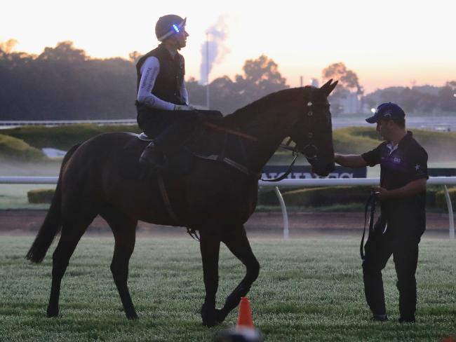 Hugh Bowman on Winx returns from a trackwork gallop.