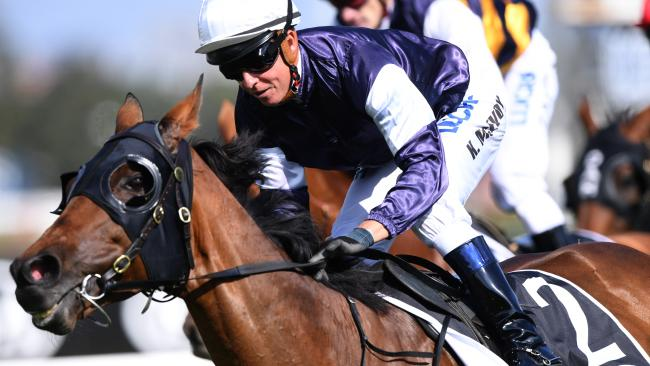 Almandin has a great chance to add the Sydney Cup to his 2016 Melbourne Cup success. Picture: AAP
