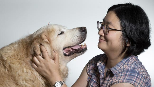 Dr Cindy Tan offers holistic health for pets on the Gold Coast, in Logan and Brisbane. Picture: Renae Droop