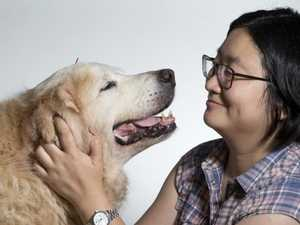 QLD pet owners turn to Chinese medicine