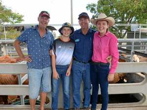 Rocky grazier hopes for rain after patchy cattle sales