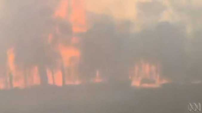 Video shows train travelling through bushfire zone in Sydney's southwest.