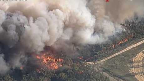 The grass fire at Casula, near Liverpool, on Saturday. Picture: 9 News