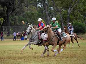 Polocrossers hit their stride