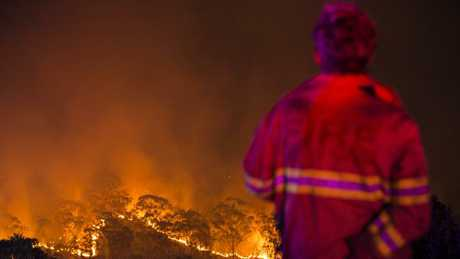 A firefighter waits on a ridge on Royal Oak Drive in Menai as a bush fire approaches homes. Picture by Damian Shaw