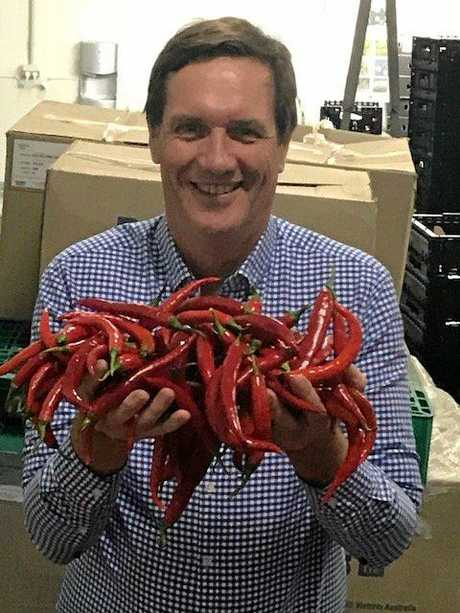 MONEY SAVER: Energy Minister Anthony Lynham at Austchilli in Bundaberg today.