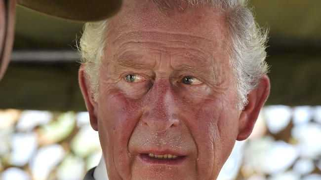 Malcolm Turnbull to help decide whether Prince Charles heads the Commonwealth