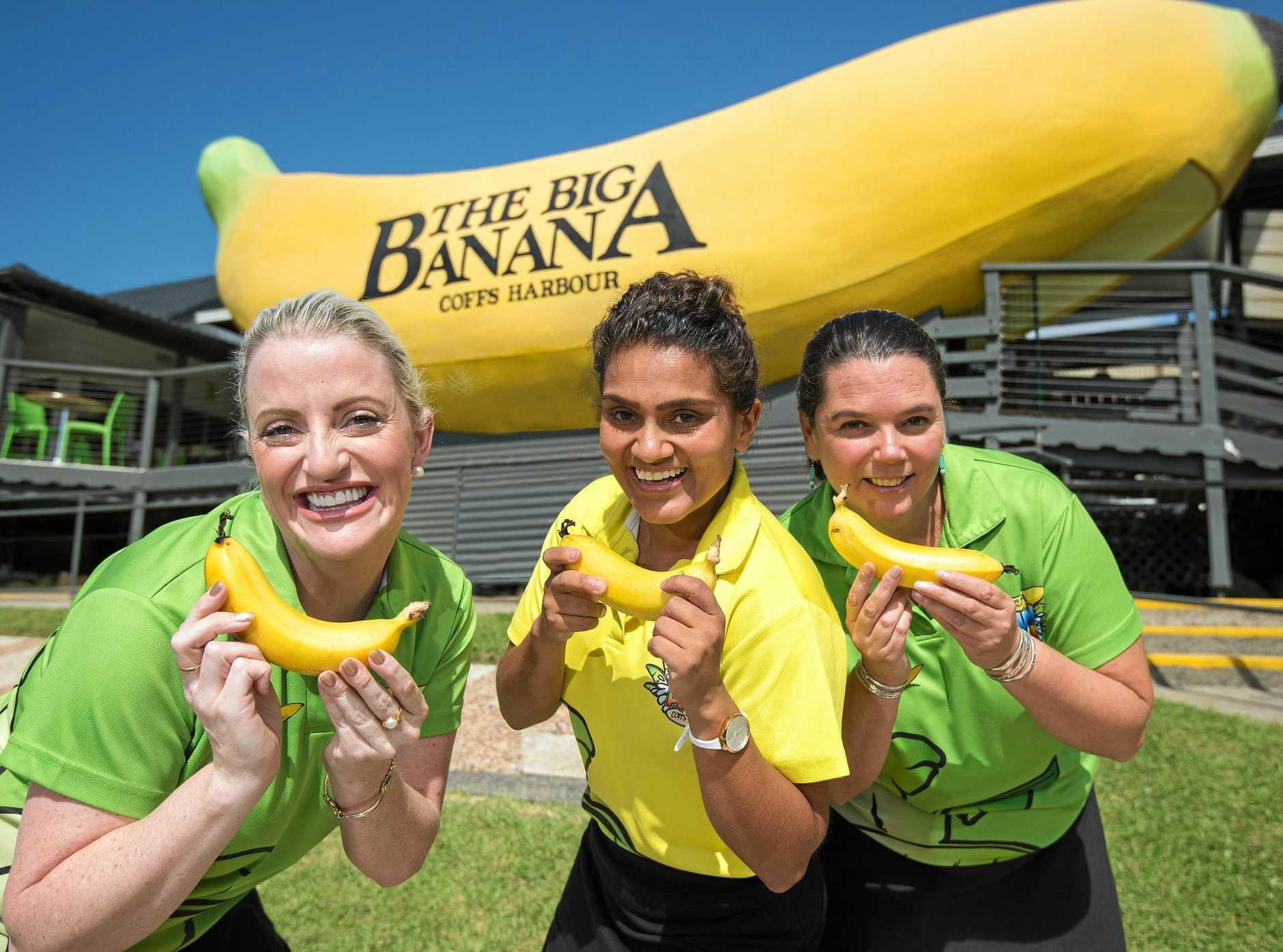 Big Banana staff members Elizabeth Courtenay, Raj Garcia and Angel Bell get into the spirit of National Banana Day.