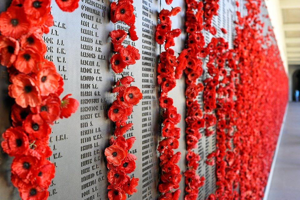Australian Remembrance day poppies.