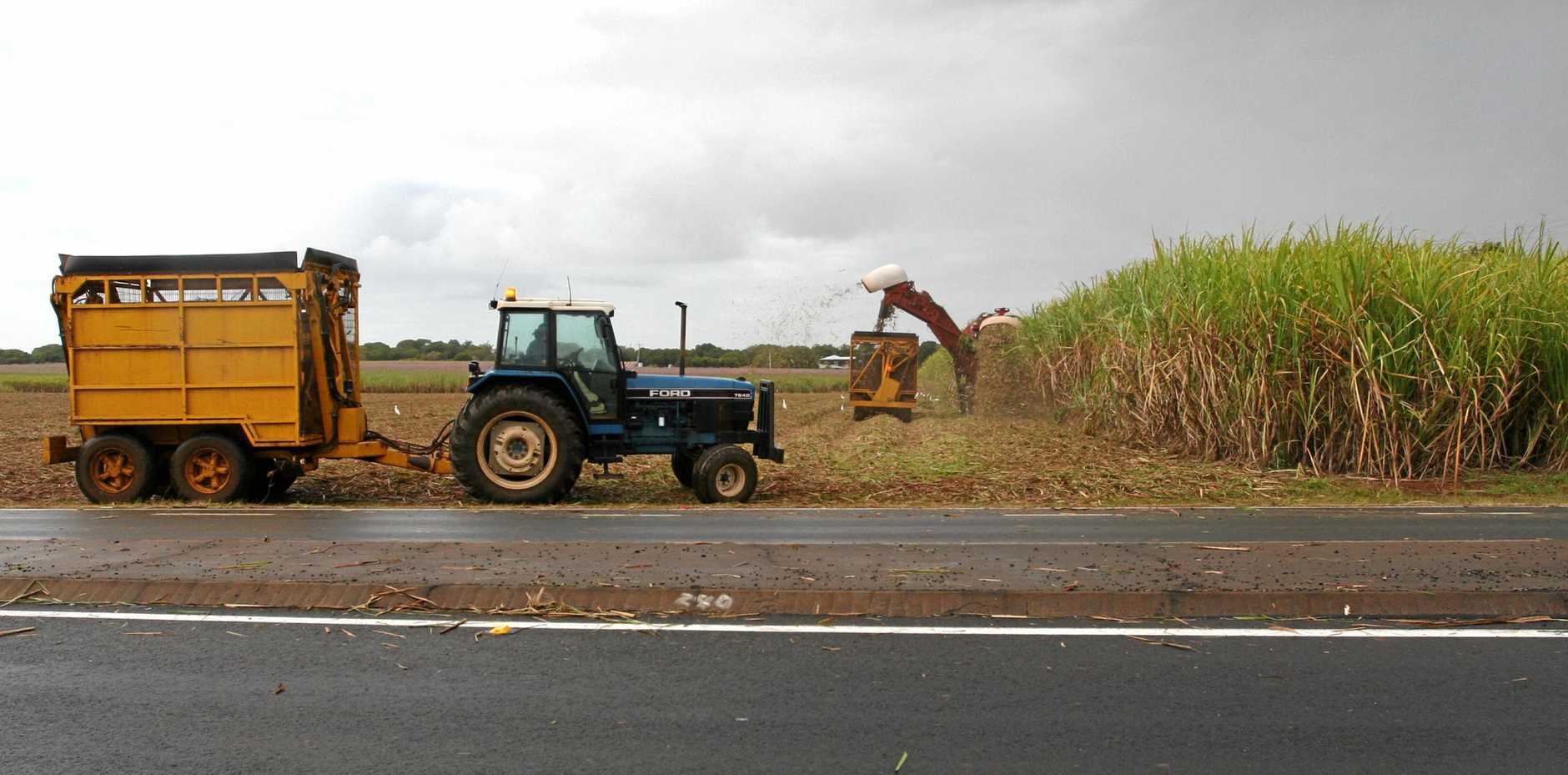WET WEATHER: A cane harvester in the fields along Bargara Rd.