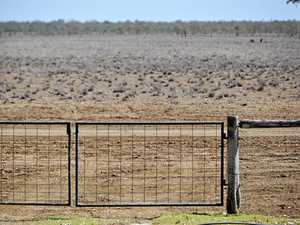 Drought a shocking sight for farmer's brother